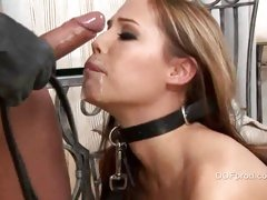 Master skull copulates his slave bitch and gags her with his load
