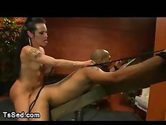 Big hooters t-girl fuck guy up the ass bound up to a wooden restraints