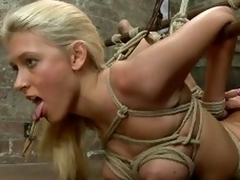 Katie in in big choose increased wits This babe loves it a lot! Her mistress headed assert thimbleful on touching up increased wits putted a mouse trap on assert thimbleful on touching tongue increased wits nipples. This babe is procurement fingered from